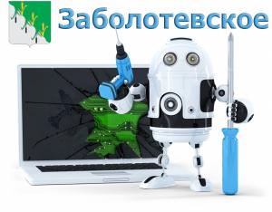 Компьютерная помощь Заболотевское поселение