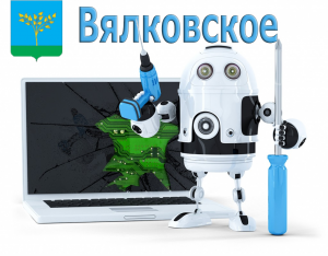 компьютерная помощь Вялковское Раменского района