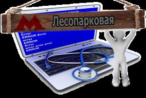 компьютерная помощь Лесопарковая